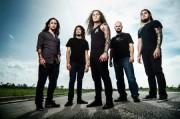 Abiotic-Band