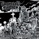 Deserted Fear - My Empire (FDA Rekotz)