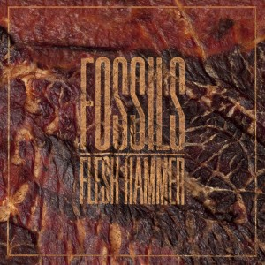 FOSSILS - Flesh Hammer_Cover
