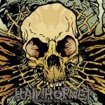 Hail Hornet -