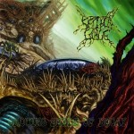 Septycal Gorge - Growing Seeds of Decay (Comatose)